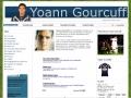 Yoann Gourcuff, l'avenir de l'équipe de france...