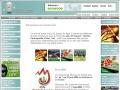 Jeux de hasard en ligne, actualités et conseils
