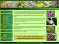 Jardinerie pepiniere